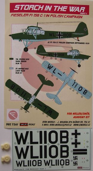 Fi 156 over Poland Part I.