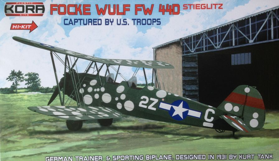Focke Wulf Fw 44D, Captured by US troops